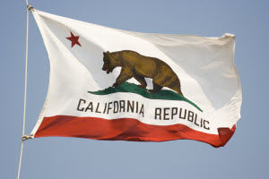 California state falt